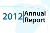 World Wind World Report 2012 launched