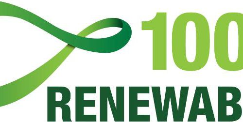 "Webinar: ""The Local Dimension of the NDCs – 100% Renewable Energy"", available as a video"